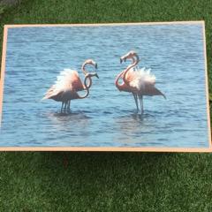 Standaard bewaarkist Flamingo's