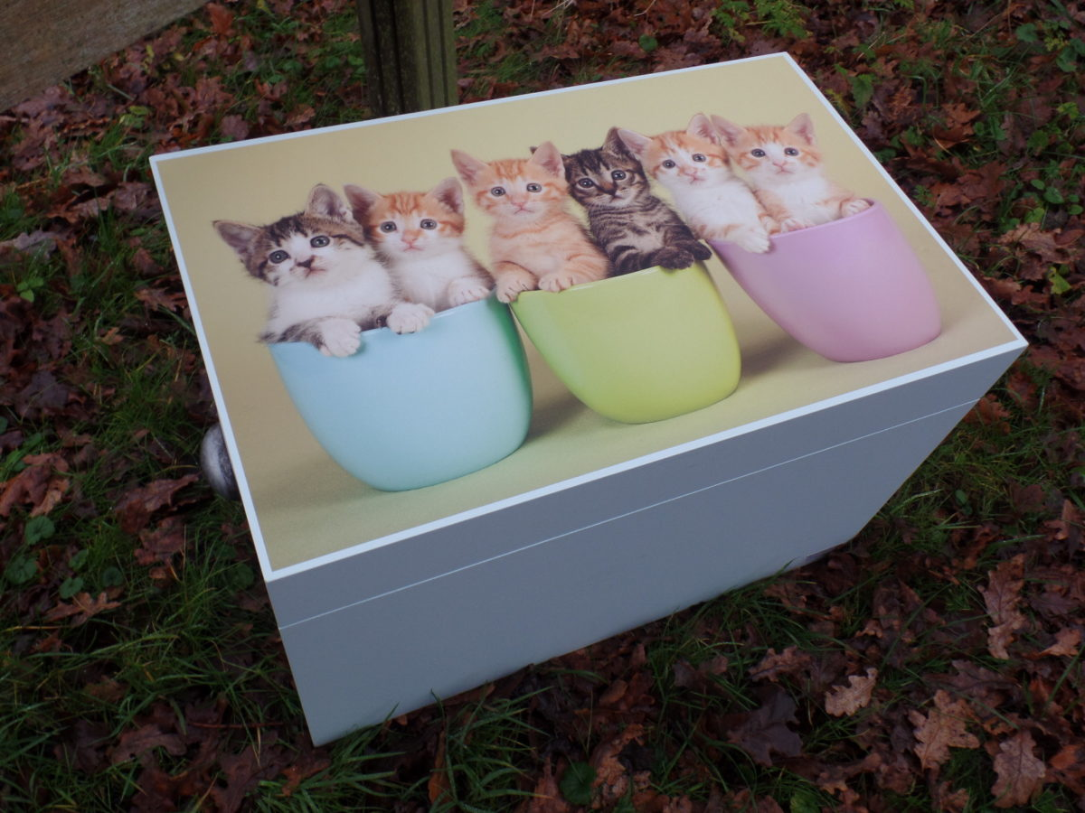 Decoratieve bewaarkist met kitten